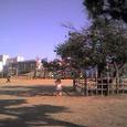 久々に公園
