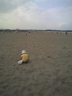 海岸清掃に参加