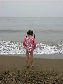 今日も凧より海