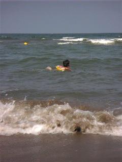 また海にきた