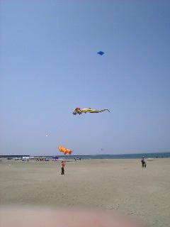 凧の祭典1日め